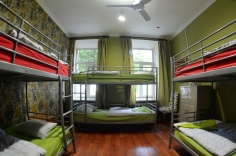 godzillas-hostels